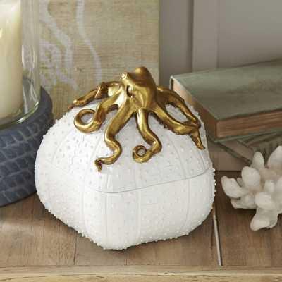 Malena Octopus Keepsake Box - Birch Lane