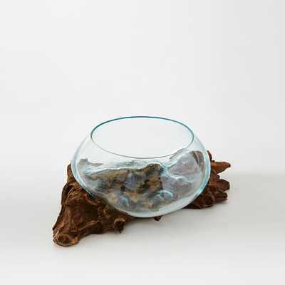 Wood + Glass Terrariums - Small - Short - West Elm