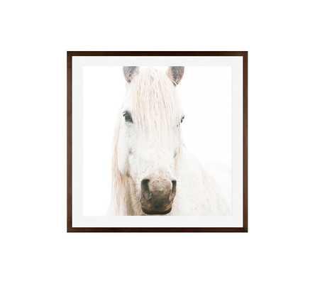 """WHITE ON WHITE HORSE FRAMED PRINT - 25 X 25""""- Framed - Pottery Barn"""