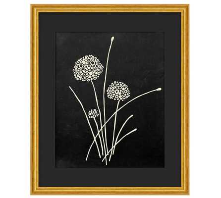 Daffodil Blooms Print - Framed - Pottery Barn