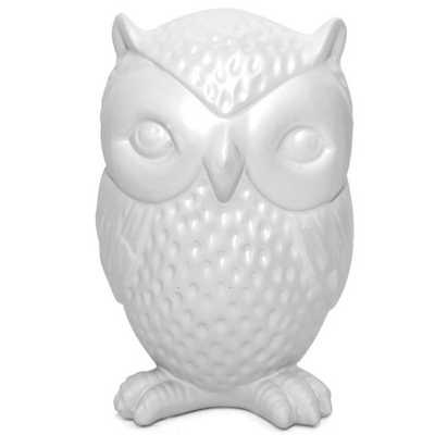 Owl Coin Bank - AllModern