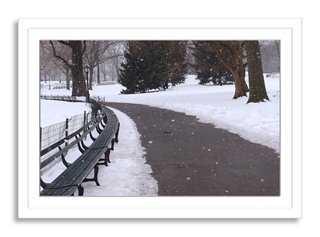 Larry Frankel, Snowfall - framed - One Kings Lane