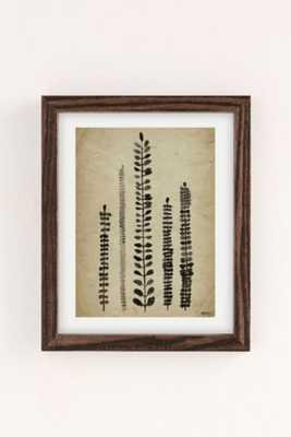 Luna Reef Rustic Ferns Art Print -Framed - Urban Outfitters