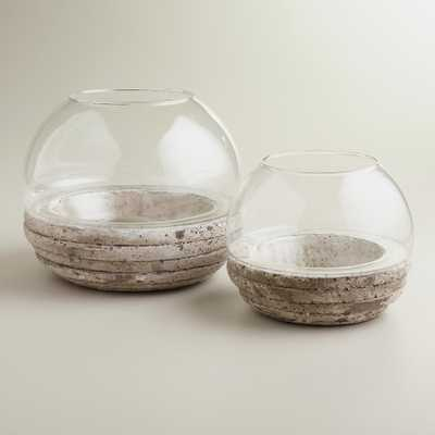 "Round Glass and Cement Terrarium 6""H - World Market/Cost Plus"