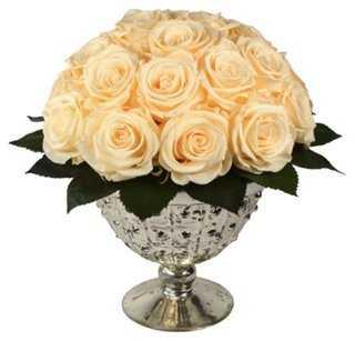 "9"" Cream Rose Arrangement, Preserved - One Kings Lane"