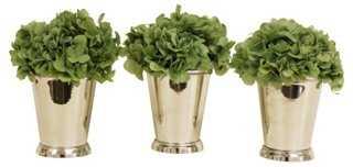 Hydrangea Julep Cups - One Kings Lane
