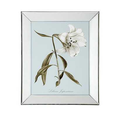 Alabaster Bloom Art -21 x 17-Framed-Print IV - Ballard Designs