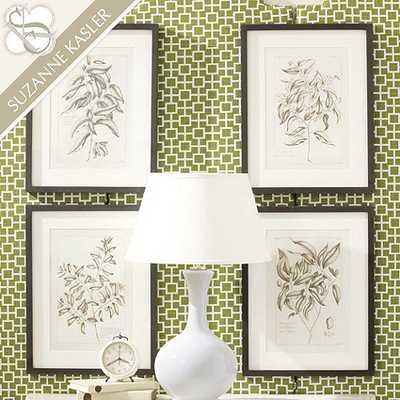 "Suzanne Kasler Sepia Framed Botanical Prints - Print II - framed - 22 1/2""H X 17 1/4""W - Ballard Designs"