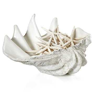 Atlantis Clam Shell - Extra Large - Z Gallerie