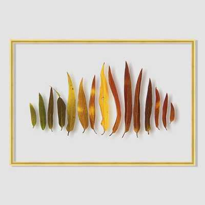 "Still Acrylic Wall Art - Autumn Botanicals - Willow Leaves - 24""w x 16""h. - framed - West Elm"