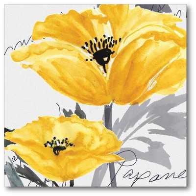 "Poppy I Gallery Wrapped Canvas - 20"" H x 16"" W - unframed - Wayfair"