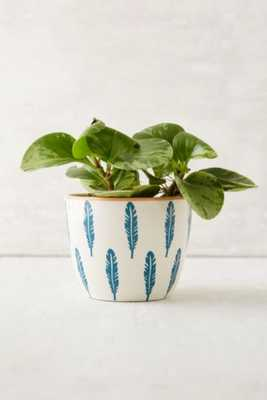 Feather Ceramic Planter - Urban Outfitters