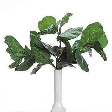 Fiddle Leaf Spray - Set of 3 - Z Gallerie