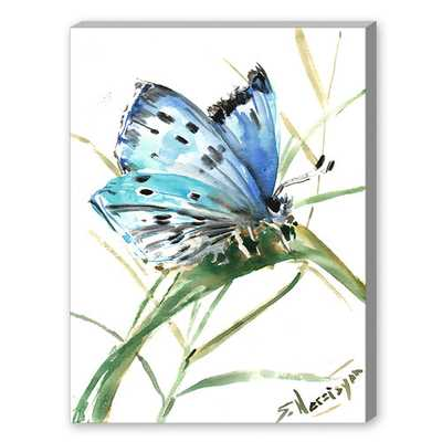 "Butterfly 3 Painting Print - 20"" H x 16"" W - Unframed - Wayfair"