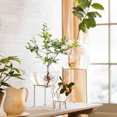 "Silver Footed Tall Plant Stand, 4-8"" - shopterrain.com"