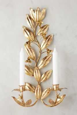 Clarisa Candle Sconce - Anthropologie