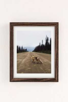 "Kevin Russ Road Fox Art Print-13""x19""-Framed - Urban Outfitters"