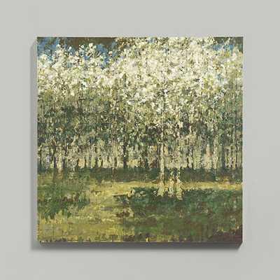 """Birch Grove Art- 47""""x 47""""- Framed - Ballard Designs"""