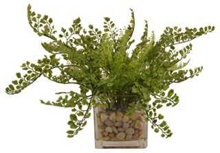 "16"" Maidenhair Fern in Vase, Faux - One Kings Lane"