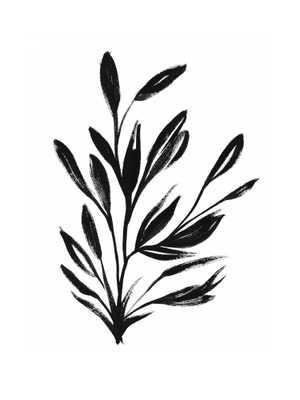 Botanical Sumi Ink framed - Domino