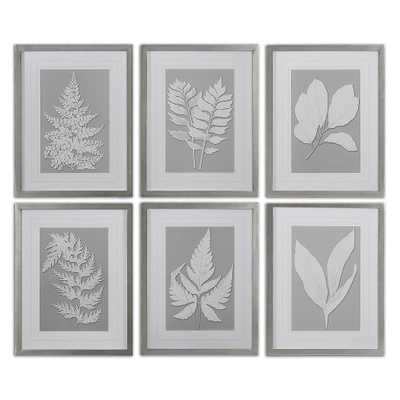 Moonlight Ferns, S/6 - 20 W X 26 H - Framed - Hudsonhill Foundry