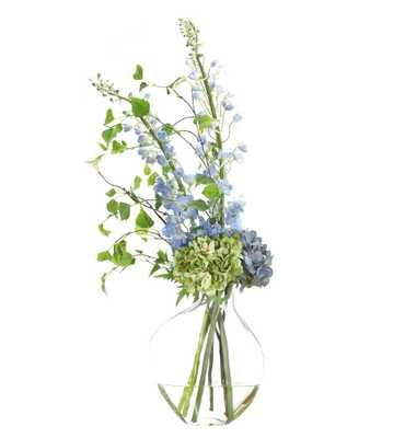 Hydrangea Delphinium - Domino