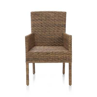 Tigris Dining Arm Chair - Crate and Barrel