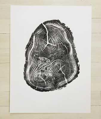 Anatomy of a Black Locust. Origional Print - 18x24 - Unframed - Etsy
