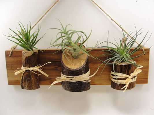 wall hanging air plant wood planter - Etsy