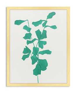Catherine Jones, Emerald Fiddle Leaf Fig - One Kings Lane