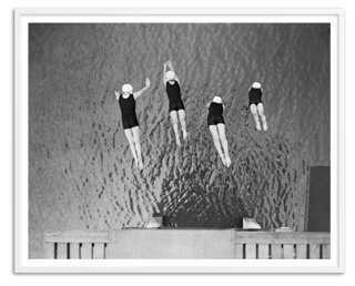 Synchronized Dive, Oversize - One Kings Lane