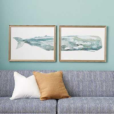 Whale Diptych Art/Framed - Ballard Designs