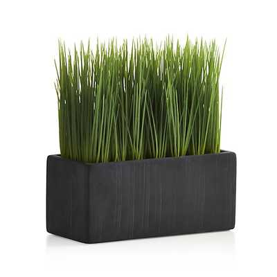Large Potted Artificial Grass - Crate and Barrel