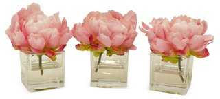 "S/3 6"" Peonies in Cubes, Faux - One Kings Lane"