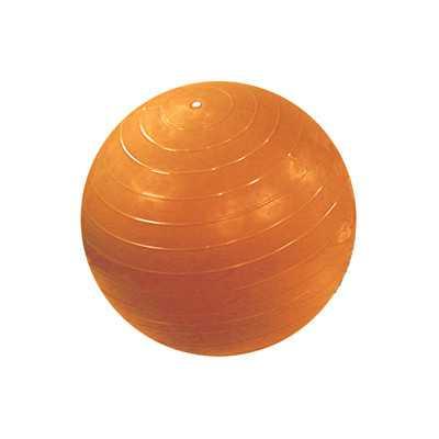 Inflatable Exercise Ball (Retail Box) - Wayfair