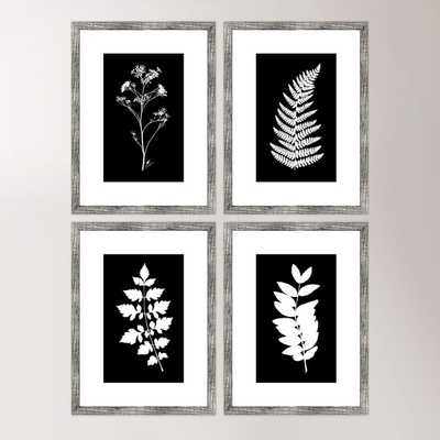 "Impressions Framed Prints - 24"" H x 18"" W x 1"" D - Framed - Birch Lane"