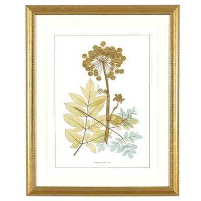 Nature's Lace Art - Print II - Ballard Designs