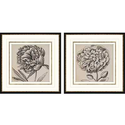 Graphic Floral I 2 Piece Framed Painting Print Shadow Box Set - Wayfair