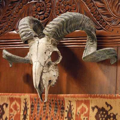 Corsican Ram Skull and Horns Trophy Wall Décorby Design Toscano - Wayfair