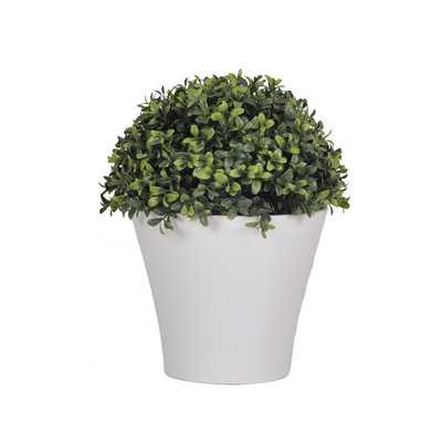 Artificial Half Ball Boxwood Topiary in Pot - Wayfair