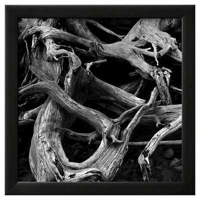 Art.com -Dead Tree Roots - Target