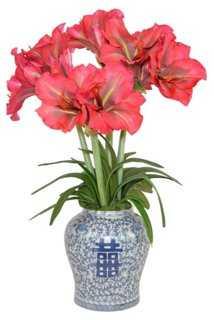 Red Amaryllis in Vase, Faux - One Kings Lane