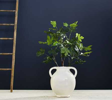 Large Fig Tree Branch - Pottery Barn