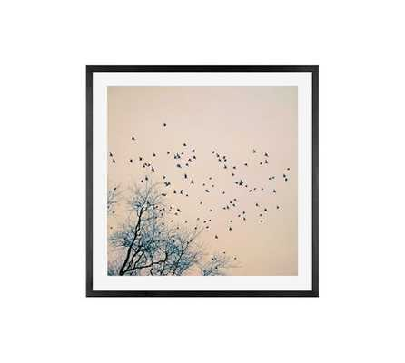 """RESTLESS BY ALICIA BOCK - 25"""" x 25""""- Framed (Black)- With mat - Pottery Barn"""