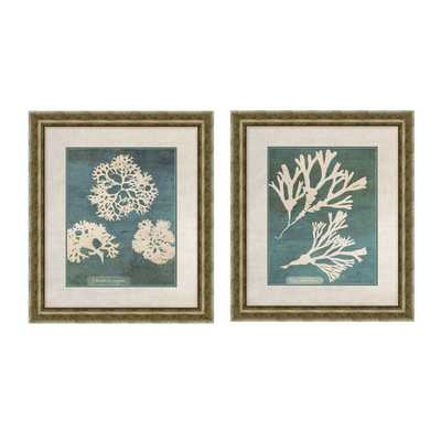Barrier 2 Piece Framed Graphic Art Set - Wayfair
