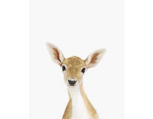 """BABY DEER LITTLE DARLING-11"""" x 17"""" - Framed - shop.com"""