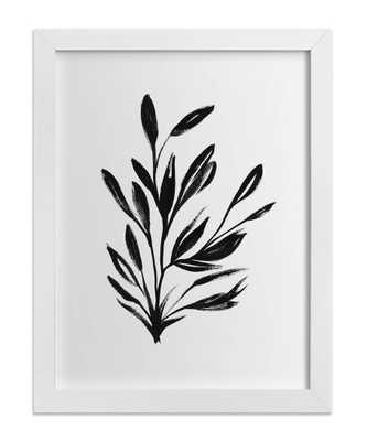 "Botanical Sumi Ink-18""x24""-Framed - Domino"