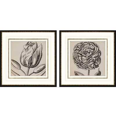 "Graphic Floral II 2 Piece Framed print-26"" - Wayfair"
