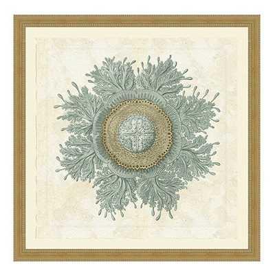 Jellyfish Bloom Framed Prints - Ballard Designs