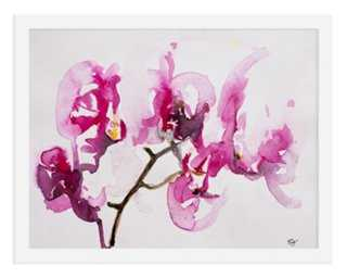 Karin Johannesson, Orchid Study - One Kings Lane
